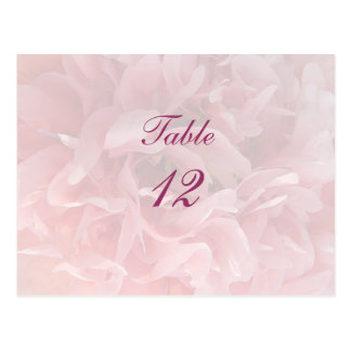 Poppy Petals Table Number Post Cards