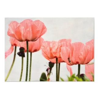"""Poppy Picture 5"""" X 7"""" Invitation Card"""