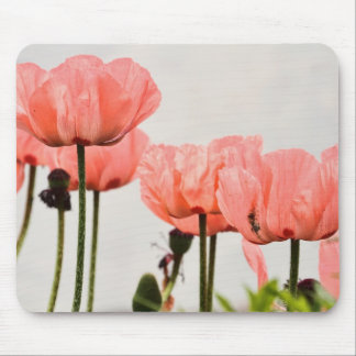 Poppy Picture Mouse Pad