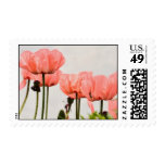 Poppy Picture Postage Stamps