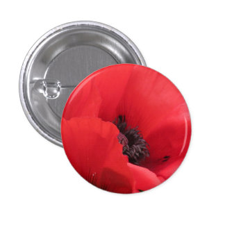 POPPY PINBACK BUTTON