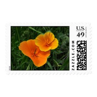 poppy postage