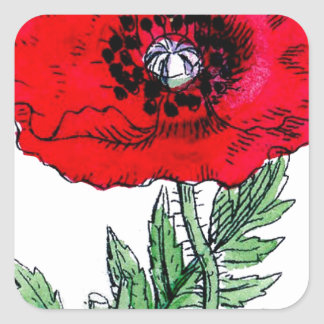 poppy red flowers vintage victorian square sticker
