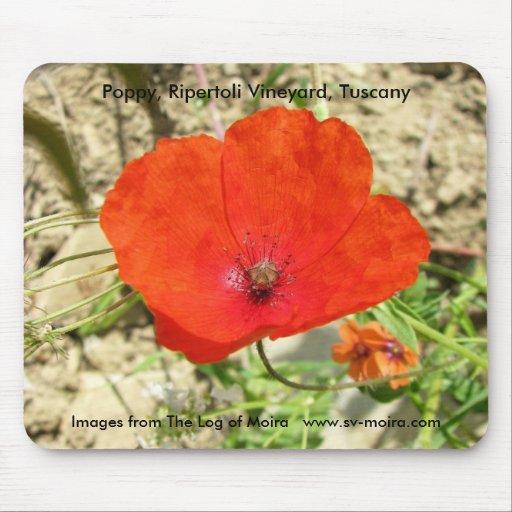 Poppy, Ripertoli Vineyard, Tuscany Mousepads