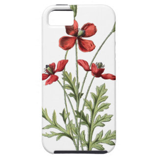poppy save antique drawing botanical plate iPhone SE/5/5s case
