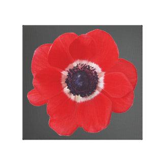 Poppy Seed Canvas Print