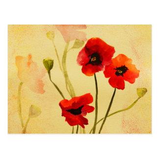 Poppy Shadows Postcard