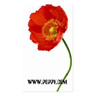 Poppy Simplicity Double-Sided Standard Business Cards (Pack Of 100)