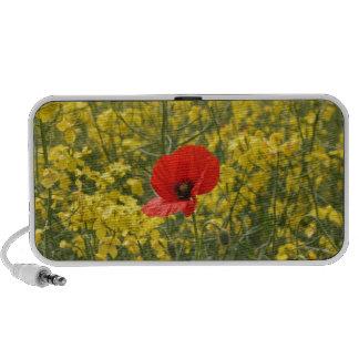 Poppy Laptop Speaker