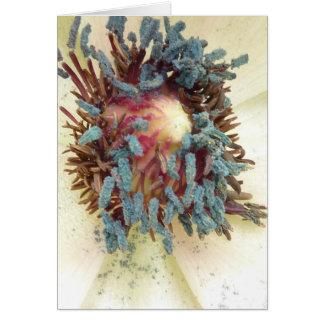 Poppy Stamens Card