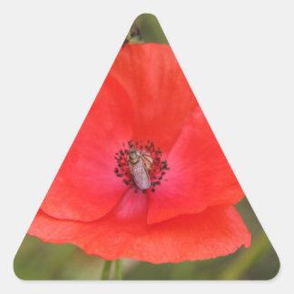 poppy triangle sticker