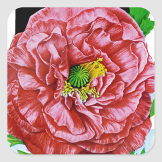 Poppy Vintage Seed Packet Square Sticker