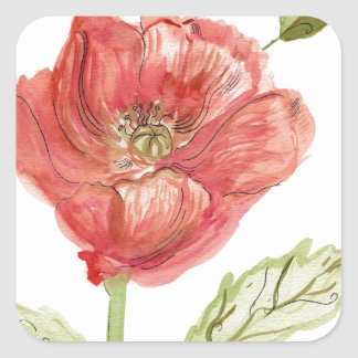Poppy Watercolor Square Sticker