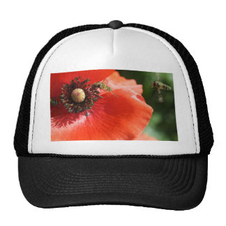 Poppy with Hover Fly Cap Trucker Hat