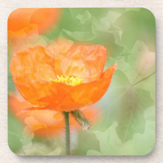 Poppy with Leaves Coaster