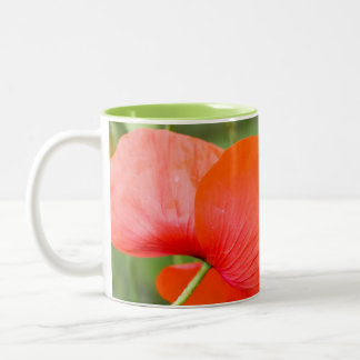 Poppycock Two-Tone Coffee Mug