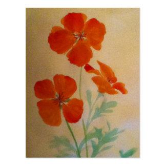 poppys.jpg postcard