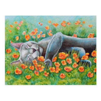 Poppy's Poppies Postcard