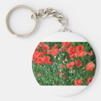 Poppys rojos ingleses llavero redondo tipo pin