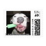 Popsicle Dog Postage