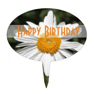 popular flower, pretty wild white daisy photograph cake topper
