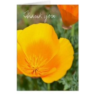 Popular Poppies Greeting Card