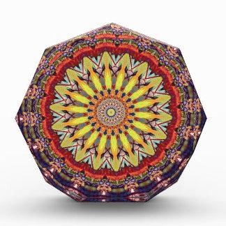 Popular Vibrant Mandala Pattern Acrylic Award