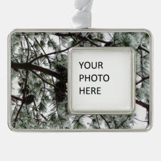 Por debajo la foto nevada del invierno del árbol adornos con foto