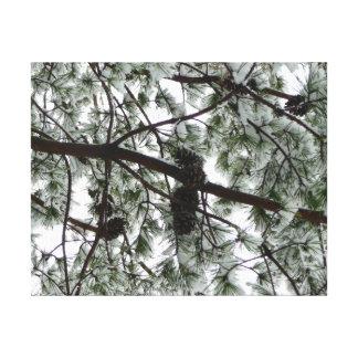 Por debajo la foto nevada del invierno del árbol impresión en lienzo