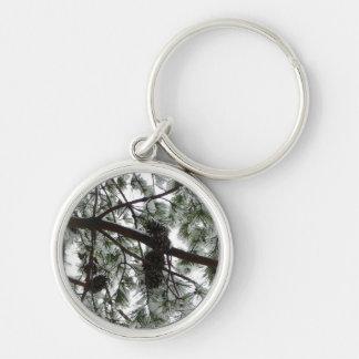 Por debajo la foto nevada del invierno del árbol llavero redondo plateado