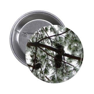 Por debajo la foto nevada del invierno del árbol pin redondo de 2 pulgadas