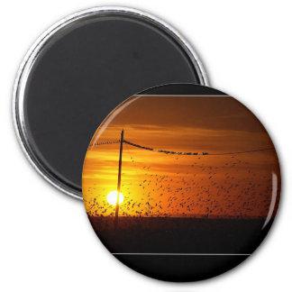 Pôr do Sol Magnet