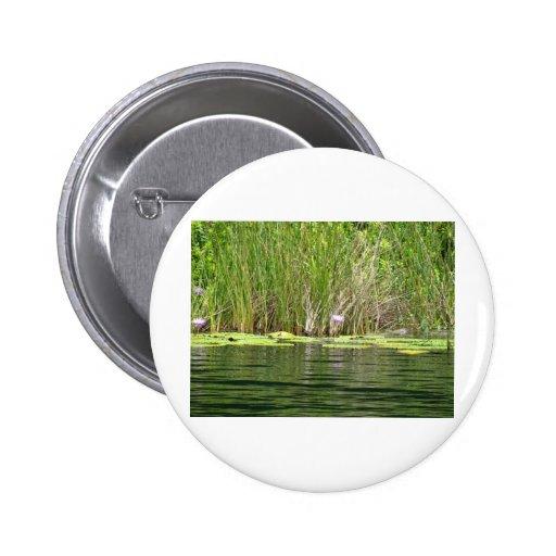 Por el agua pin