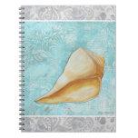 Por el cuaderno de la concha del mar