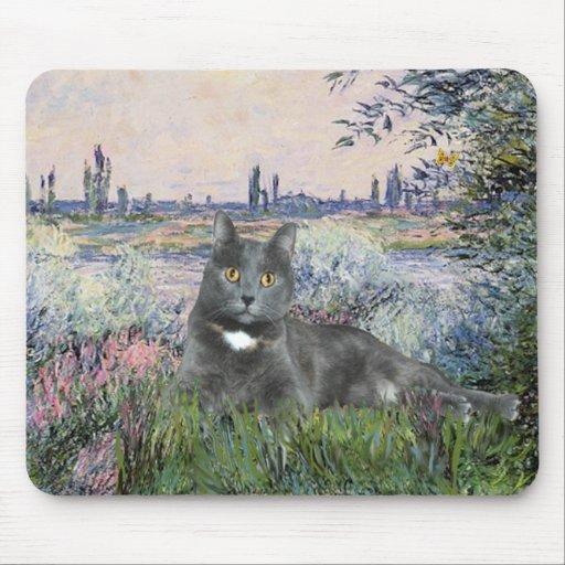 Por el gato del gris del Sena Tapetes De Ratón