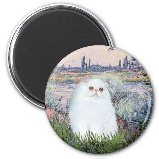 Por el Sena - gatito persa blanco #49 Imán Redondo 5 Cm