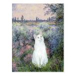 Por el Sena - gato blanco Postal