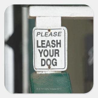Por favor correo su muestra del perro pegatina cuadrada