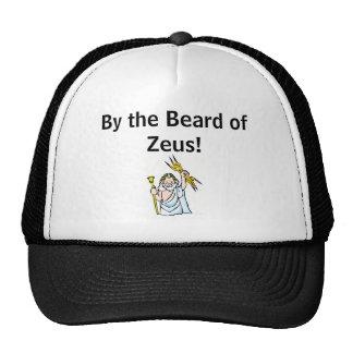 ¡Por la barba de Zeus! casquillo Gorros