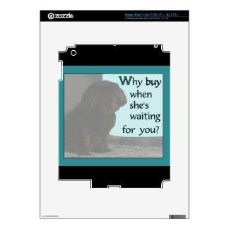 ¿Por qué compra? iPad 3 Pegatina Skin