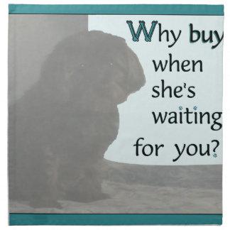 ¿Por qué compra? Servilleta De Papel
