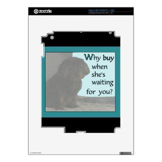 ¿Por qué compra? Skins Para iPad 2