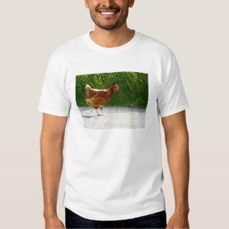 ¿Por qué el pollo cruzó el camino? Camisas