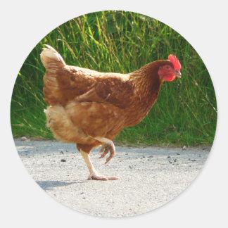 ¿Por qué el pollo cruzó el camino? Pegatina Redonda