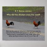 ¿Por qué el pollo cruzó? - (pequeño) poster