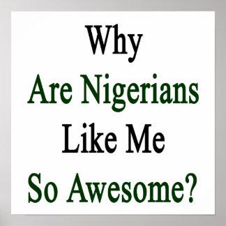 ¿Por qué es Nigerians como mí tan impresionante? Póster