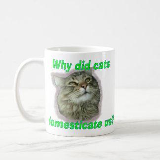 ¿Por qué los gatos nos domesticaron? Taza