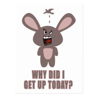 ¿Por qué me levanté hoy? Postales