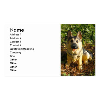 Porcelain Dog Double-Sided Standard Business Cards (Pack Of 100)