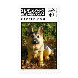 Porcelain Dog Stamp